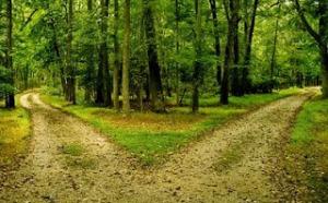 dos_caminos