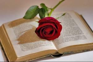 rosa-y-libro